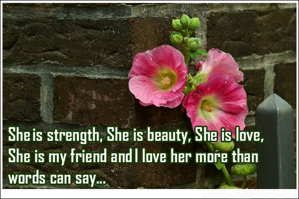 I Love You Quotes And Images For Her : Love You Quotes For Her about She is strength and beauty Love ...